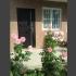 Сдаю уютный дом в Сочи на берегу моря