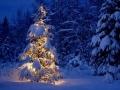 Как отпраздновать 2014 Новый год